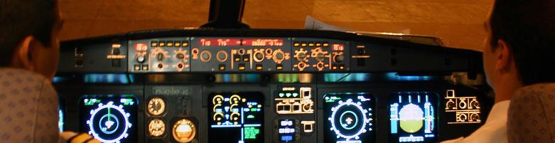 Curso Pro Flight - Piloto Comercial de Avião